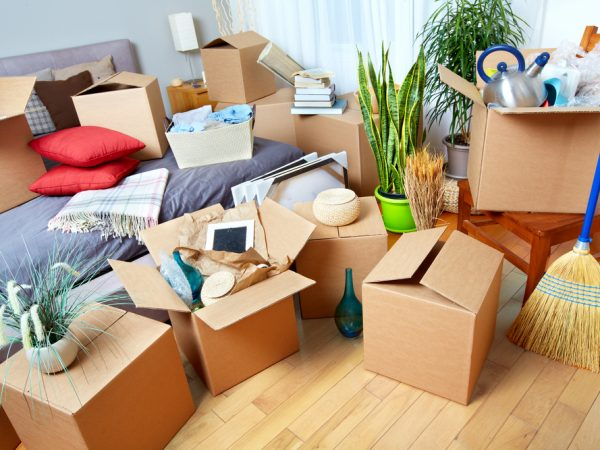 Move from one city to another – you will find the best moving company !